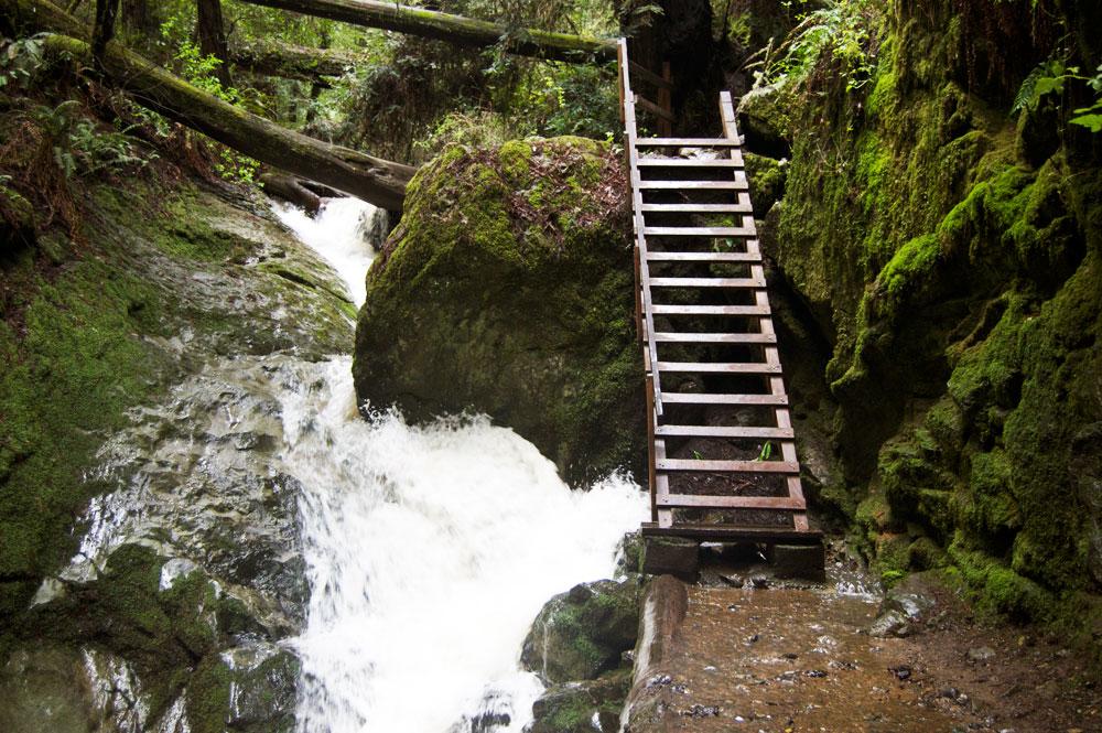 falls_ladder