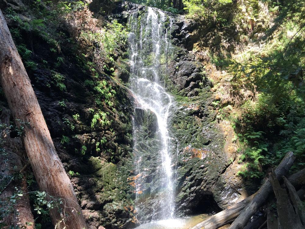 Waterfalls | Berry Creek Falls